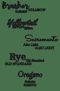 Possible-Fonts-for-BizI