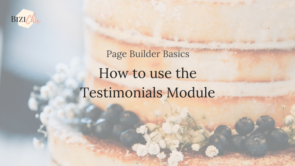 How to use the testimonials module on BiziChix